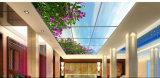 ホームのための超薄い40W平らな天井灯の景色映像LEDのパネルは飾る