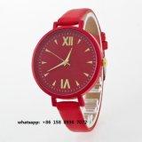 Relógio colorido do movimento de quartzo com couro para as mulheres Fs501
