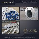 LED en acier inoxydable de pôles d'éclairage de rue pour le jardin