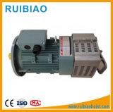 Motor de elevación del engranaje del motor del alzamiento del edificio del motor del alzamiento de la construcción