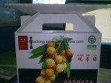 Boîte recyclable Boîte Corflute Polypropylène / PP Carré Polypropylène Boîte Coroplast Carton Plastique et Fruits et Légumes