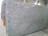 Onda/granito branco da onda/granito branco da onda/granito branco para a bancada