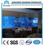 Acuario de acrílico de la hoja del plexiglás claro para el proyecto del restaurante