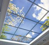 홈을%s 매우 얇은 40W 편평한 천장 빛 풍광 그림 LED 위원회는 꾸민다