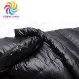 冬の大人の屋外のキャンプのたまり場の走行の寝袋