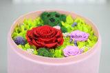Conserva la caja de regalo de flores frescas