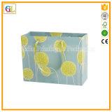 Des boutiques de luxe sac de papier dans les différents types de conception