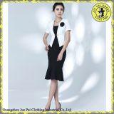Bureau de style fashion Mesdames jupe