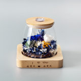 Handmade естественные сохраненные цветки Rose с светом для подарка