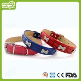 Colar de Pet colorizado e leash