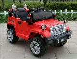 Qualitäts-neue Fahrt auf elektrisches Auto mit gutem Preis