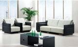 La nuova combinazione moderna del cuoio di disegno dell'Italia mette il sofà a sedere dell'ufficio (UL-NS415)