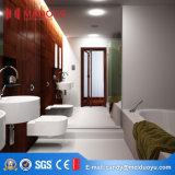 Дверь популярной ванной комнаты Tempered стекла конструкции Bi-Складывая