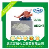 Vendre la perte de poids en usine en poudre L-Carnitine/ Orlistat/ la rasagiline CAS 541-15-1