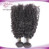 Virgem Extensões de cabelo afro malaio malaio Cabelos encaracolados Remy