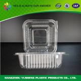 De duidelijke Beschikbare Plastic Container van de Sandwich