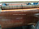 Bois revêtu de couleur Motif imprimé PPGI tôle en acier