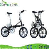 China Big Power Mag Wheel Electric Foldable Bike