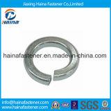 Arandela elástica inoxidable Steel304/316 del estruendo 127