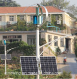 generatore di vento verticale di asse 1000W per zona di montagna (200W-5kw)