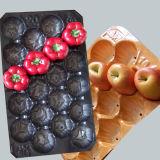 Em todo o mundo frutas bandeja de plástico PP descartáveis