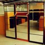 Garderobe van de Deur van de Ontwerpen van Godrej Almirah van de verkoop goed de Dubbele