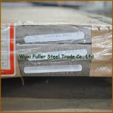 Qualitäts-warm gewalztes 304 Edelstahl-Blatt/Platte