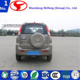 China-Hersteller-preiswerte elektrische Autos