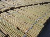 정원 장식적인 인공적인 담쟁이 덩굴 잎 쪼개지는 대나무 담