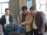 Motor Siemens e rolamento SKF Moinho para moer milho