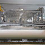 H печатает клетку на машинке слоя цыпленка с автоматической системой фидера потатора