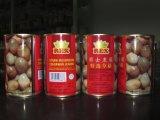 最もよい中国からの価格によって缶詰にされるわらきのこ