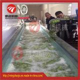 Máquina de lavar nova da bolha do vegetal e da fruta para a venda