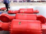 La machinerie de construction Water-Drilling-Rig chromée de vérin hydraulique de levage Jack