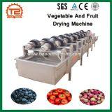 Sécheur de fruits de la machine de séchage de fruits et légumes