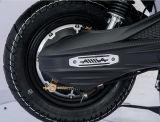 Gama de longa distância motociclo eléctrico com a caixa de carga