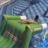 Kundenspezifische Spaß-aufblasbare Wasser-Park-Spiele (Schweber-Tänzer/Bett/Schloss/Haus-Tier/Prahler)