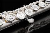 Все серебро Professional флейты /высокое качество /пайки Tonehole B ноги