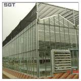 Un manque de fer serre en verre solaire en verre trempé