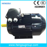 Motor elétrico da indução superior trifásica do ferro de molde da eficiência Ye3