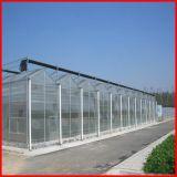 中国の製造者の販売のための農業のパソコンシートの温室