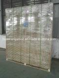 Noyau creux tubulaires de l'aggloméré/Panneaux de particules pour la Porte et du mobilier