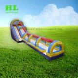 長い三色水ゲーム子供のための膨脹可能な水スライド