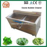 산업 시금치 Broccoil 식물성 오존 거품 세탁기술자