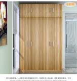 침실 가구 (WD-1299)의 높은 광택 옷장