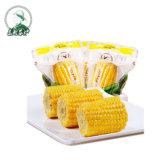 Свежие заготовленных семян сахарной кукурузы с вакуумным сумку для мгновенного продовольственной