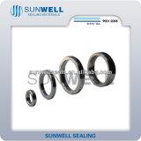 Un tipo ovale guarnizione dei 2017 nuovi prodotti della giuntura dell'anello