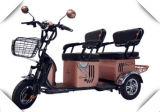 [3-وهيل] درّاجة ثلاثية كهربائيّة مع [بسّنجر ست] لأنّ بالغ