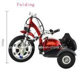 A dobragem três rodas Scooter de Mobilidade Trikke Scooter Eléctrico bicicleta eléctrica