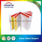 Livros coloridos personalizados da cor do sistema de pintura